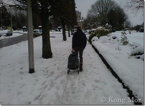 Indkoeb i sneen
